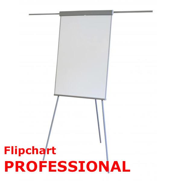 flipchart professional